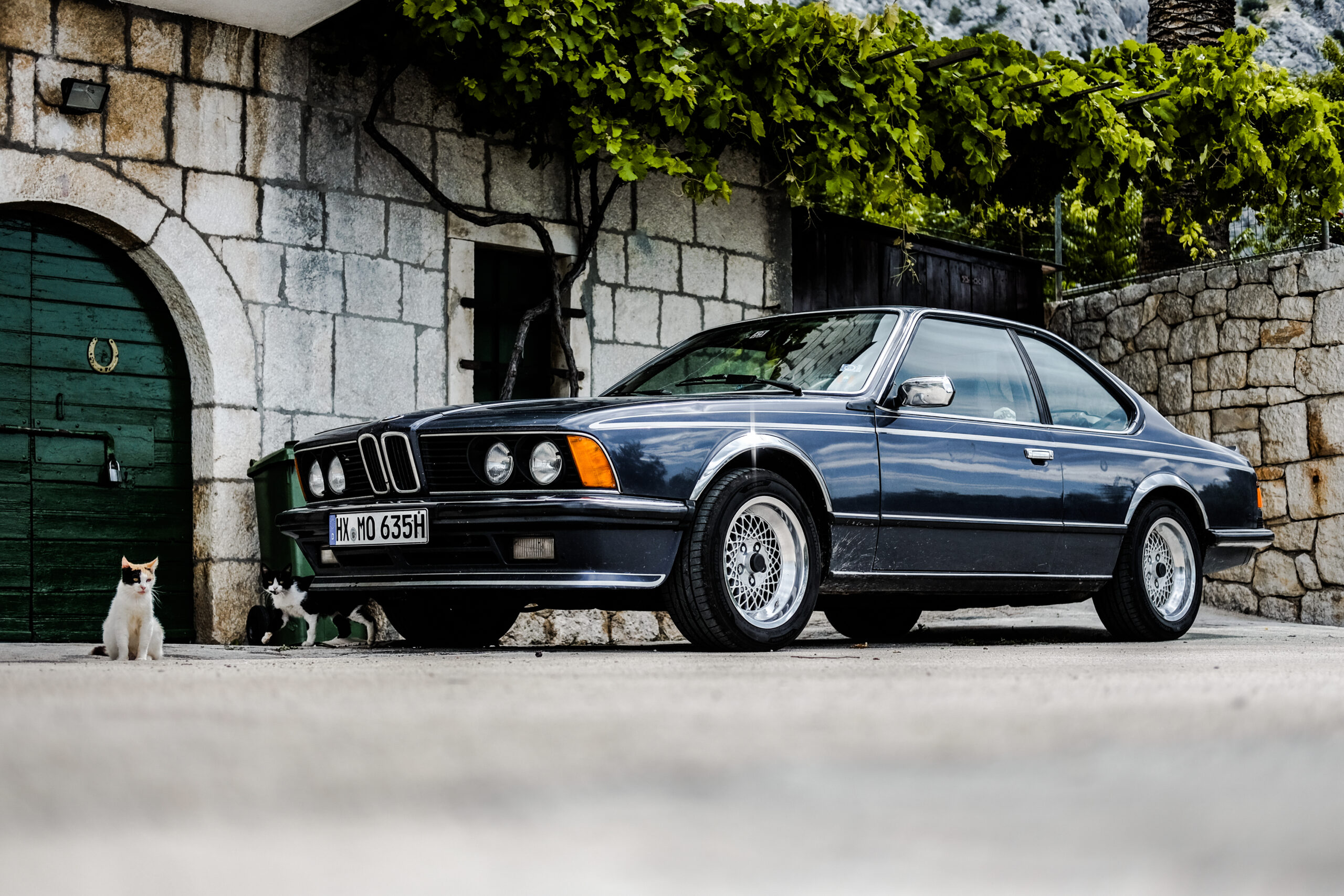 BMW 635 On The Road